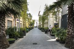 Peotonal Straight (ken mccown) Tags: mexicocity streetscape landscapearchitecture landscapedesign pedestrianpath