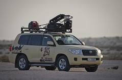 (القلايــل) Tags: الامارات الكويت البحرين عمان المقناص قطر السعودية طيور شاهين حر فرخ قنص قرناس القلايل