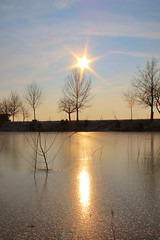 Sunset At The Lake, Part 1 (Domi3391) Tags: winter sunset sun reflection tree ice nature water germany deutschland see wasser sonnenuntergang natur himmel eis sonne schwarzwald blackforest baum digitalcameraclub
