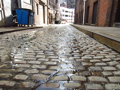cobbles (Zombie37) Tags: street blue brown texture wet dumpster alley ground bumpy surface baltimore cobblestones cobblestone worn belgianblock