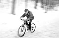 Winter Cyclist (trekok, enjoying) Tags: winter cold mt cyclist royal m qc bitterly elementsorganizer