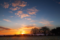 Calm Sunrise (Natasha Bridges) Tags: morning pink trees winter snow sunrise countryside shropshire fields risingsun wrekin