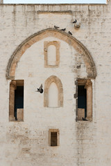 IMG_7724 (jaglazier) Tags: 13thcentury 13thcenturyad 15thcentury 15thcenturyad 17thcentury 17thcenturyad 2016 8216 apulia arches architecture august buildings castles centrostorico cittabianca columns copyright2016jamesaglazier fortresses forts hilltowns houses italy oldtown ostuni spanish towers urbanism walls whitecity circuitwalls cities gothicarches roundtowers streetscapes whitewash whitewashed puglia