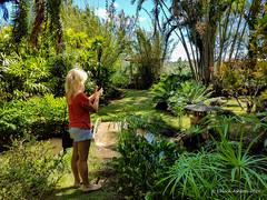Grove Farm (9 of 16) (Chuck 55) Tags: grove farm kauai hawaii