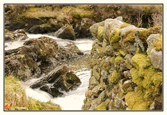 Moss Covered Wall (Audrey A Jackson) Tags: canon60d cumbria lakedistrict nature wall moss springtime colour rocks 1001nightsmagiccity
