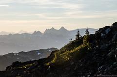 DSC_8842 (sammckoy.com) Tags: garibaldipark castletowers scrambling mountaineering hiking summer mountgaribaldi sphinxbay blacktusk helmcreek gentianridge