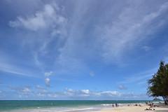 DSC_2090 (24yang) Tags: kailua hawaii honolulu beach