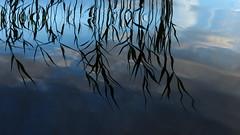 A June evening at Lake Suuri-Kortteinen (Kaavi, 20160629) (RainoL) Tags: 2016 201606 20160629 fin finland fz200 geo:lat=6299880218 geo:lon=2872459173 geotagged june kaavi lake niemikylä nuottalahti pohjoissavo reflection summer suurikortteinen