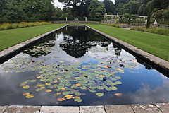 Bodnant Gardens (alison's daily photo) Tags: bodnantgardens northwales pond waterlilies