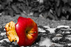 Dead apple (kristin.mockenhaupt) Tags: apfel apple fruit frucht obst essen food reste kerngehuse colorkey