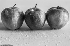 Mele (-Andreyes- www.andreabastia-photo.com) Tags: mele tre colore bianco nero bn gocce acqua contrasto cibo frutta rosso wwwandreabastiaphotocom