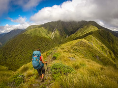 Tararua Ranges GoPro (11) (eefdeboeck) Tags: newzealand nature landscapes landscape travel summer mountains forests hiking outdoors avventura fjellsport
