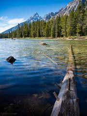Jenny Lake (ColoradoFlip) Tags: grandtetonnationalpark