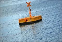 DSC_00200 (LAGRAJA) Tags: mar sea bolla boullant tres seal amarillo yellow sing indication