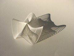 Shadow of a Plucker's Conoid (fdecomite) Tags: 3d printing math povray conoid shapeways