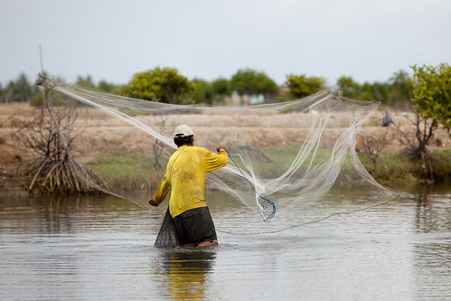Fishing in shrimp ponds in Aceh, Indonesia. Photo by Mike Lusmore/Duckrabbit, 2012.