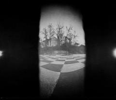(dragan goranov) Tags: trees chess twin pinhole peaks
