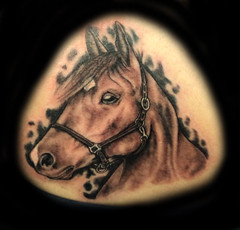 """Horse Realism • <a style=""""font-size:0.8em;"""" href=""""http://www.flickr.com/photos/75536936@N03/8105534845/"""" target=""""_blank"""">View on Flickr</a>"""