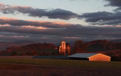 Sunrise 10.21.3 (=Melvin the Satyr=) Tags: morning autumn trees fall colors clouds barn sunrise farm fallcolors farmland autumncolors silos darkclouds bucolic autumnsunrise autumnmorning
