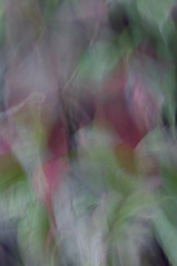 2/2 (Girardartist) Tags: abstraction abstrait artphotography photographieartistique