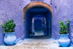 la ruelle bleue (cafard cosmique) Tags: africa mountain photography photo foto image northafrica morocco maroc chaouen chefchaouen marruecos marokko rif marrocos afrique chefchouen xaouen chouen afriquedunord    bluetowncity