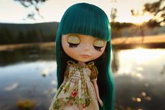 Listening to the Harmonies of Nature (jessi.bryan) Tags: trip sunset vacation doll sewing pam yellowstonenationalpark yellowstone blythe wingsinflight princessalamode