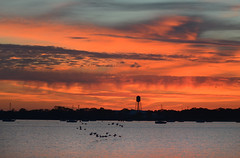 Brant Sunrise (hpaich) Tags: desktop morning pink wallpaper sky cloud color bird water marina sunrise dawn bay boat fly flying skies background watertower salmon maritime nautical desktopwallpaper brant desktopbackground raritanbay virga