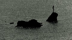[AA0335]* 2012/10/28_002 (sdb66) Tags: sea italy water mediterraneo italia day outdoor ch abruzzo adriatico vasto nikond200 nikkorafsdxvr18200mmf3556gifed