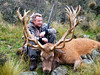 New Zealand Red Stag Hunting - Christchurch 24