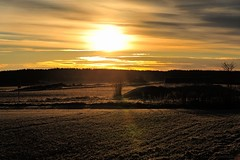 Early Morning (305-366) (nikkorglass) Tags: oktober sunrise october 70200 hemma soluppgång 305 d700 366project 305366