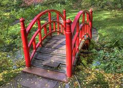 Red Bridge (Jan Kranendonk) Tags: park bridge red holland japan garden japanese denhaag tuin brug bruggetje japanse