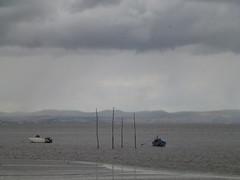 sitio das hortas (*L) Tags: geotagged barcos chuva tejo birdies alcochete estacas stiodashortas paizaije landesqueipe geo:lat=3876082262062787 geo:lon=8936648686998296
