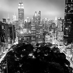 Madison Square Park and Midtown Manhattan (Adam Garelick) Tags: city nyc newyorkcity blackandwhite fall 120 6x6 film monochrome architecture night mediumformat manhattan midtown hasselblad empirestatebuilding 100 2012 fujineopanacros ilfordilfosol3 223m10