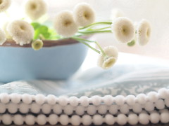 cottonBalls (Majlee) Tags: pompoms blueandwhite matricaria