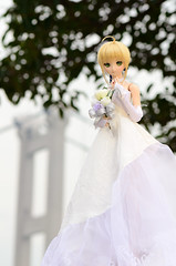 DSC_8082 (TonyBSD) Tags: wedding hk girl hongkong nikon doll dress saber bjd dslr dd dollfie volks   tsingmabridge    tsingyi  dollfiedream tingkaubridge lantaulink     lantaulinkvisitorscentre d7000