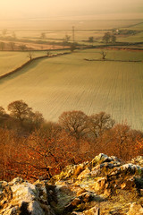 Looking Down (Pommysheilah) Tags: morning trees winter mist countryside rocks frost shropshire fields haughmondhill