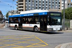 STCP 3162 01-38-UF (Howard_Pulling) Tags: camera summer bus portugal buses nikon august porto stcp autobus portuguese 2012 hpulling howardpulling d5100