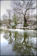 Staffs & Worcs, near Wolverley (Rob-33) Tags: trees snow reflection ice reflections canal worcestershire snowscene pentaxkx wolverley wetreflections wetreflection staffsworcscanal tamron1024mm