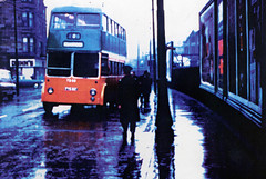 Image titled Trolley Bus, 1960s