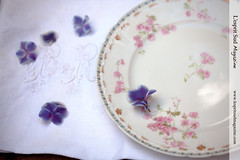 Antique french plate from GDA Limoges - Circa 1941 - 1953 (Scrumptious Venus) Tags: french limoges gda antiquefrenchplate lespritsudmagazine wwwlespritsudmagazinecom gerarddufraisseixmorelabbotlimoges