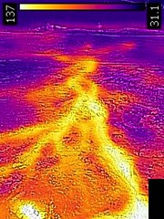 Thermal image of runoff from Bottlecap Geyser-Ballcap Geyser area (morning, 11 June 2016) (James St. John) Tags: bottlecap geyser hill group upper basin yellowstone hotspot volcano wyoming hot springs thermal image temperature