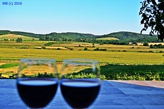DSC_0100n wb (bwagnerfoto) Tags: red wine regly tolna landscape landschaft tjkp hills dombsg dombok fields kilts view village falu