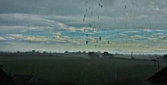 Scottish Summertime (Stuart McK) Tags: scotland ayrshire rain
