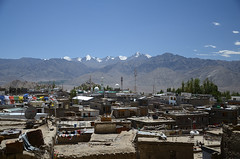 Old Leh and The Stok & Great Himalayan Range (dave beere) Tags: india ladakh buddism buddah monastery gompa