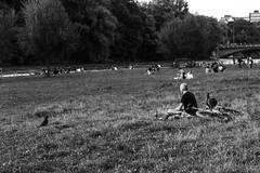 The Crow is watching the man, and the man what is he watching? (chiara.poire) Tags: natura nature alberi park parco gioco monacodibaviera monaco munchen baviera green verde people persone germany germania bw black white bianco nero blackwhite bianconero bn corvo