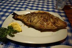 2015 05 09 Vac Phils m Cebu - Santa Fe - night life - @ Blue Ice Bar Restaurant-31 (pierre-marius M) Tags: cebu santafe nightlife blueicebar restaurant