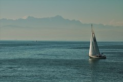 Bodensee (heiko.moser (+ 9.500.000 views )) Tags: bodensee wasser water sea see boot schiff outdoor canon color heikomoser
