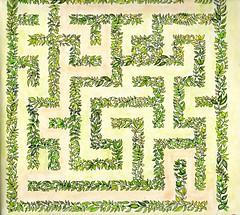 Secret Garden -003 (ronniesz) Tags: zentangleinspiredart adultcoloring derwentinktensepencils finelinecoloredpens prismacolorpencils patterns penandink nature flowers whimsy