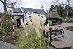 0009 Fitzpatrick's Pub Jenkinstown.jpg (Tom Bruen1) Tags: 2014 countylouth fitzpatrickspub guinness jenkinstown sign signpost