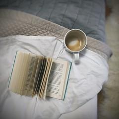:: settled stillness :: (www.contemplatingtheexquisite.typepad.com) Tags: reading booklove morning mug happiness